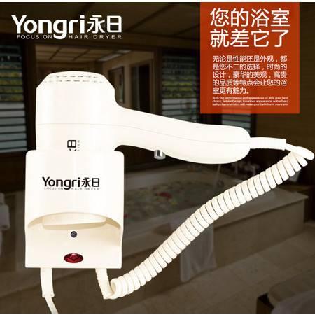 吹风机大功率美发专用电吹风挂壁式酒店电吹风 YR-6602