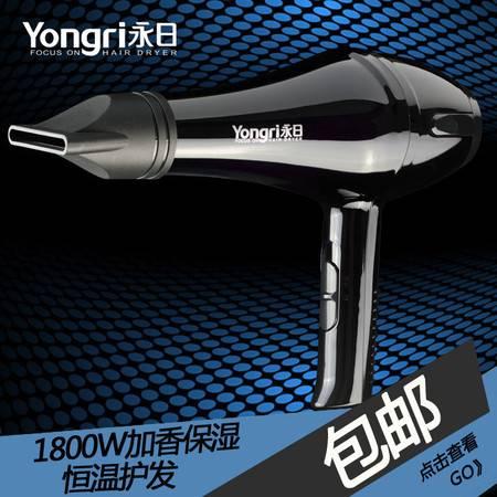 永日家用静音大功率电吹风发廊家用冷热风美发专用吹风机YR-6210