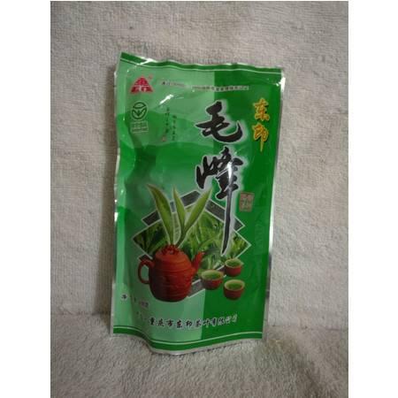 2016新茶垫江东印毛峰雨前特级绿茶100g袋装茶叶