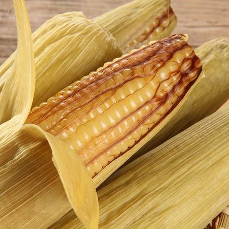 禾久有机带皮甜糯玉米 新鲜嫩粘黏玉米棒真空包装 非东北产老苞米