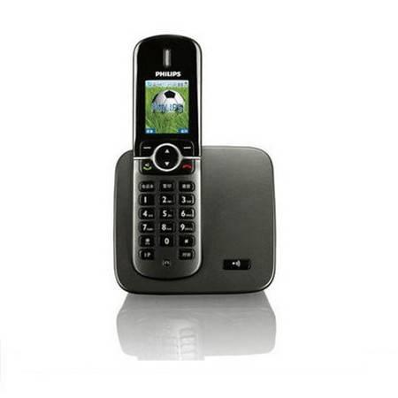 飞利浦(PHILIPS)DCTG570 高档彩色屏幕数字无绳电话 黑色