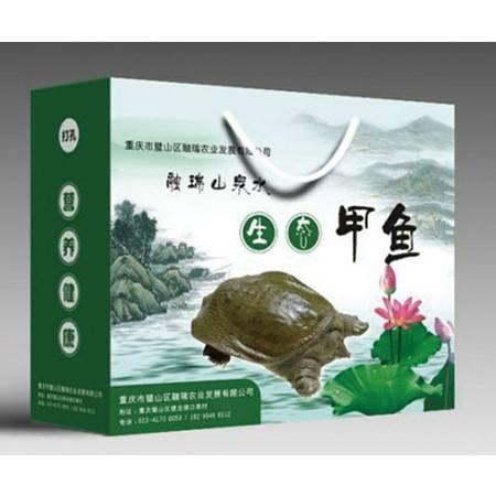 融瑞山泉水生态甲鱼1750g/只