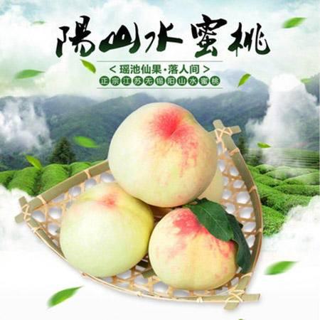 【宿迁】无锡阳山水蜜桃 4.5-5两  12只装