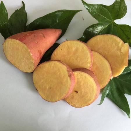 余江 原生态红薯 中国科学院红壤生态实验站-农家自产新鲜红薯 8斤装红薯包邮