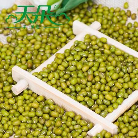 天朵明绿豆农家自产明绿豆 皮薄肉厚笨绿豆 小绿豆500g