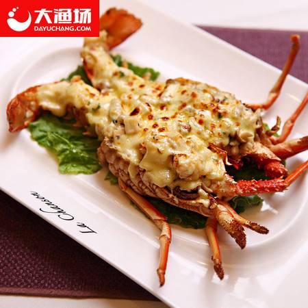 【大渔场】澳洲龙虾鲜活 3斤 捕捞鲜活发货  鲜活发货 新鲜