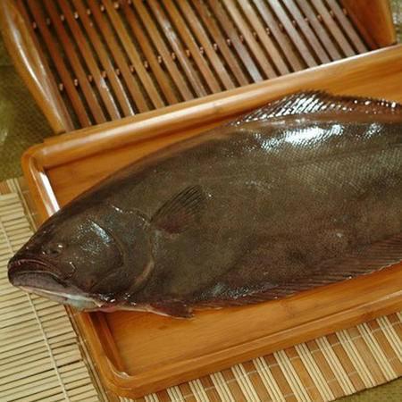 大连特产新鲜小偏口鱼 野生 鼓眼鱼 鲜活比目鱼 4-5条/斤