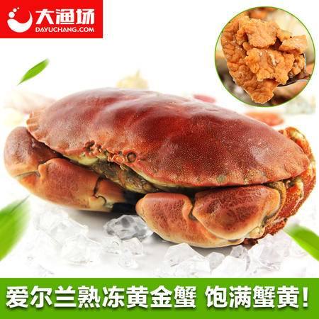 爱尔兰进口黄金蟹 熟冻面包蟹 大螃蟹800-600g/只 膏蟹 珍宝蟹