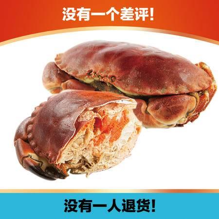 进口黄金蟹2只 熟冻面包蟹大螃蟹800-600g/只 海蟹珍宝蟹母
