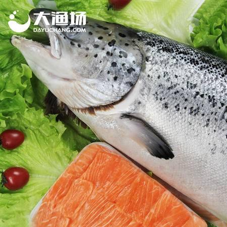 【大渔场】智利进口冷冻三文鱼 7-6.5kg/条 三文鱼刺身 整条鲜嫩