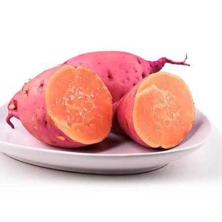 【邮乐濮阳】TQ 龙薯九号红心红薯 山芋 地瓜 5斤