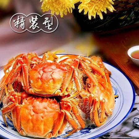 苏州 阳澄湖 邮滋味 大闸蟹 精装型