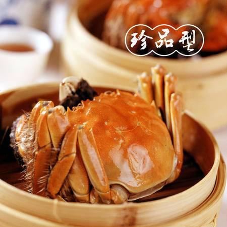 苏州 阳澄湖 邮滋味 大闸蟹 珍品型 秒杀
