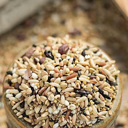 龙江县杂粮组合黑米+红米+小米+高粱米1600g包邮