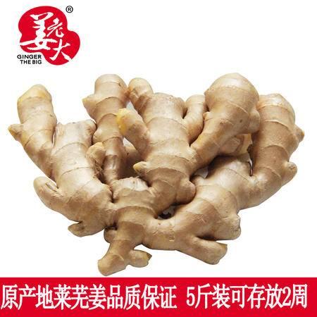 莱芜姜生姜新鲜老黄姜月子姜新鲜蔬菜调味调料鲜姜大姜5斤装