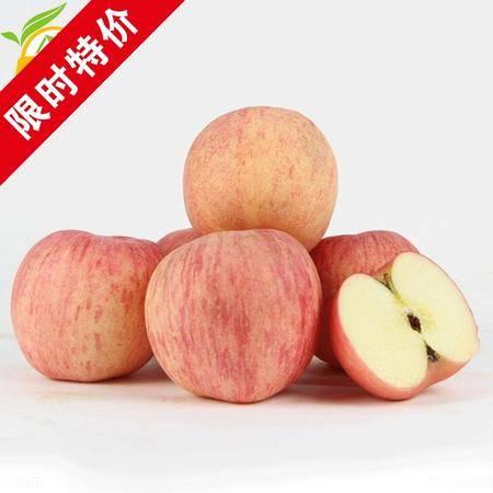 杞农云商  沙土地苹果 山东红富士新鲜苹果 4.5斤 新鲜水果包邮