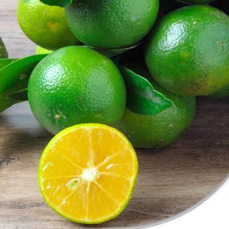 杞农云商 海南小青橘 小蜜桔子 2500g约18-22个