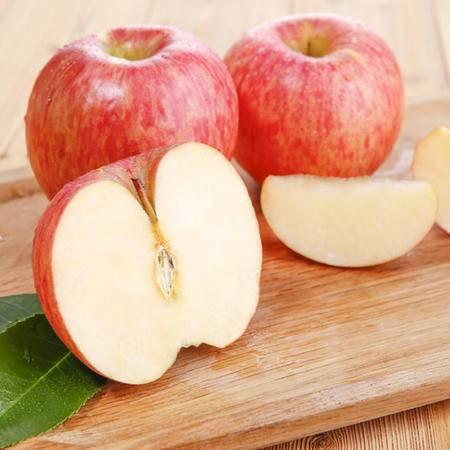 杞农云商 新鲜水果红将军苹果 1500g