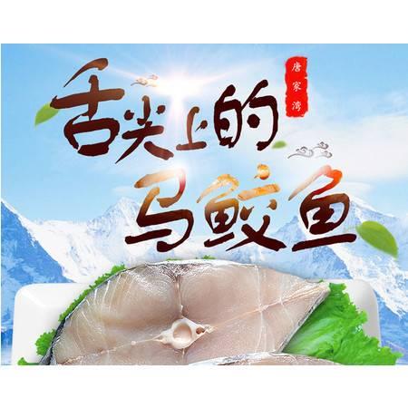 湛江唐家湾 南海马鲛鱼