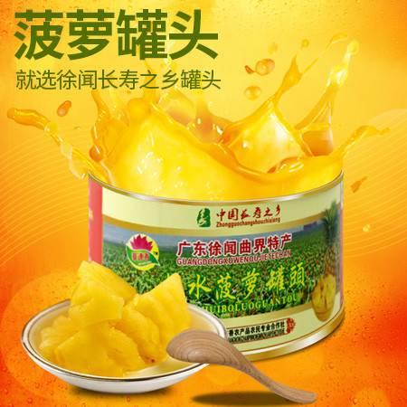湛江徐闻特产水果罐头清甜可口华莲香糖水菠萝罐头9罐