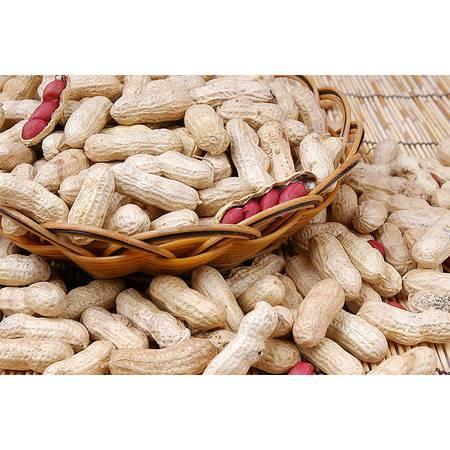 16年新货农家自种的红皮衣生花生带壳晒干小粒新鲜纯天然特产3斤包邮