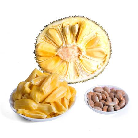 徐闻菠萝蜜 新鲜水果20斤装 热带菠萝特产 优惠包邮