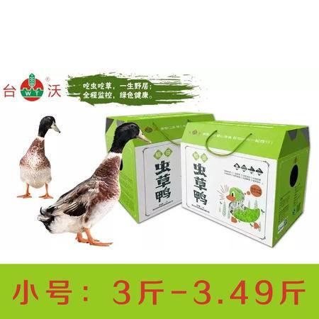 """台沃 稻田""""虫草鸭"""" 稻鸭共育 生态种养 毛重:3斤-3.49斤"""