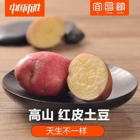 【宜昌馆】新鲜蔬菜红皮黄心土豆 三峡高山洋芋 农家马铃薯 5斤