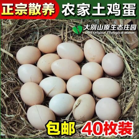 农家散养土鸡蛋笨鸡蛋放养土鸡蛋生态鸡蛋泉水蛋新鲜 40枚装包邮