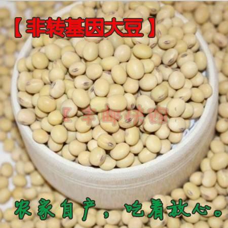 【丰邮快购】农家自产原生态非转基因大豆黄豆5斤装(预售)