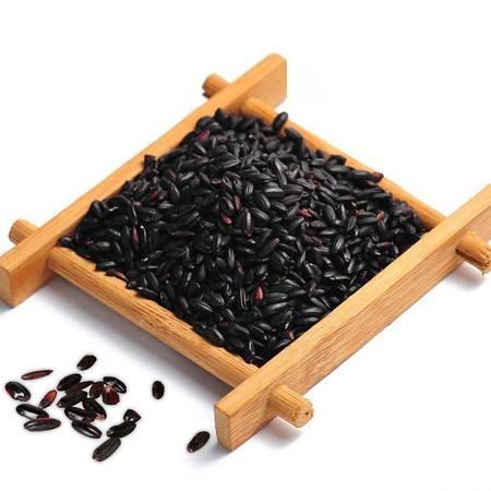双亚2015洋县黑米杂粮新货 农家自产纯天然无污染有机黑米2.5kg包邮