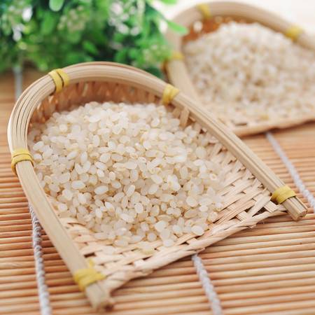 双亚健康宝宝米 胚芽营养粥米 绿色农家自产纯天然胚芽米新米5斤包邮