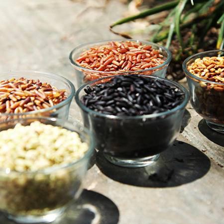双亚洋县特产有机杂粮 非转基因农家自产五彩米500g 纯天然无染色五谷糙米