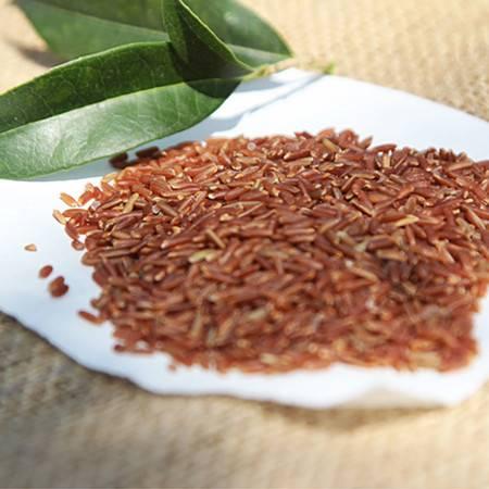 陕西特产农家自产纯天然洋县红大米 糙米1000g 地理标志认证产品