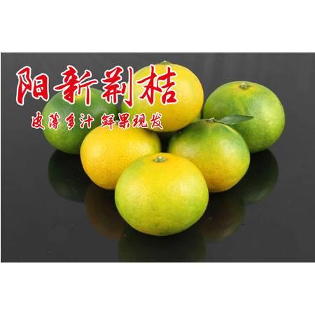 阳新荆头山特产 现摘现发 新鲜无公害水果  品质蜜桔  皮薄多汁5斤装
