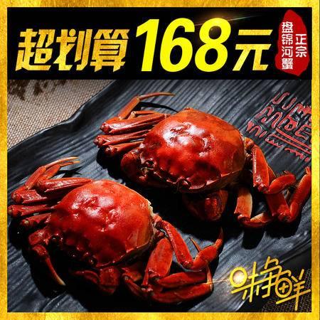 盘锦河蟹大闸蟹公母对蟹2.4-2.0共10只河蟹礼盒其他