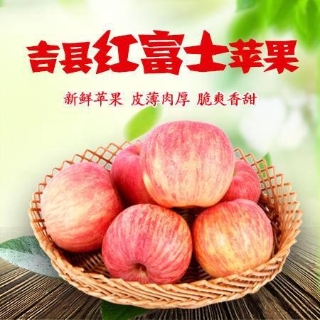 【山西特产】吉县红富士苹果75#—80#*12枚,新鲜采摘苹果