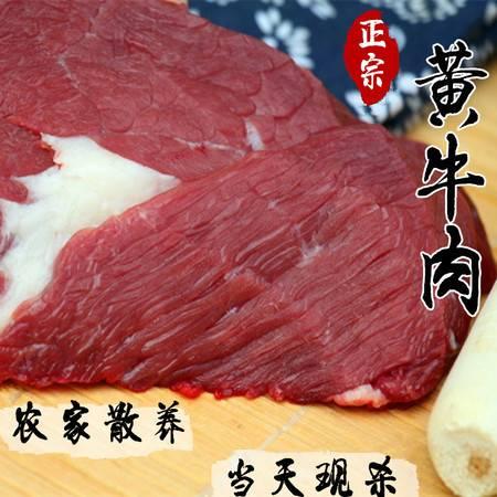 正宗放养土黄牛新鲜黄牛肉干牛肉不注水牛肉现杀发货2000g