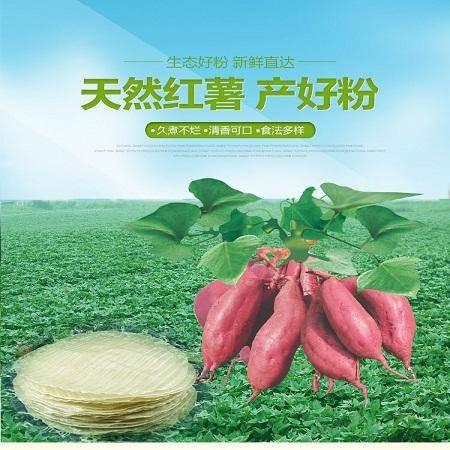 林州特产农家自制红薯粉皮5斤礼盒装