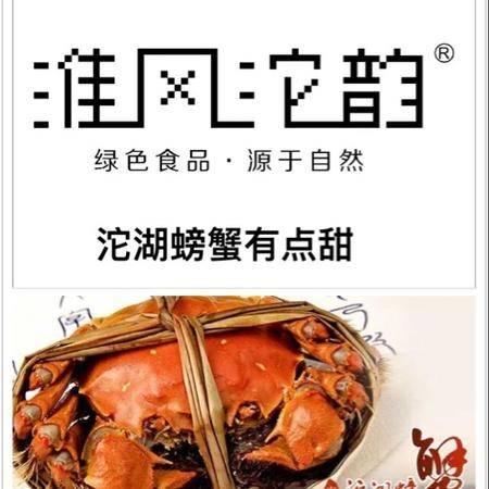 〖淮风沱韵〗沱湖螃蟹,10只装公母对半,公蟹3.5两,母蟹2.5两。