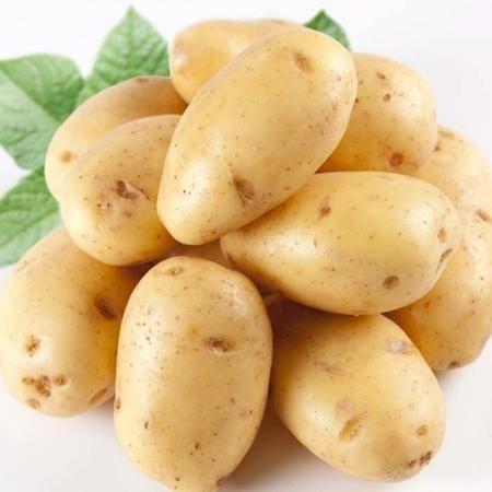 憨农闵 ——大土豆