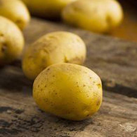 憨农闵 ——小土豆