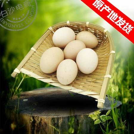 富涵土鸡蛋虫草蛋柴鸡蛋笨鸡蛋25枚无公害农村散养