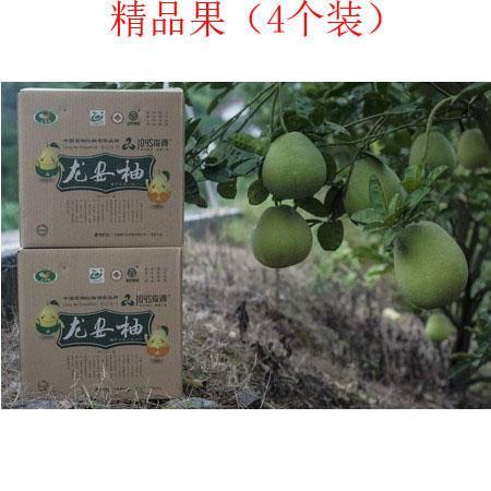 广安龙安柚(精品果)(4个装)