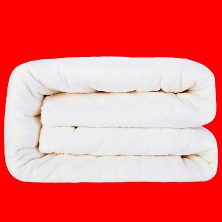 戈壁棉业 纯棉被子超大双人床被子8斤被保暖冬被200x230cm活动至12月20日