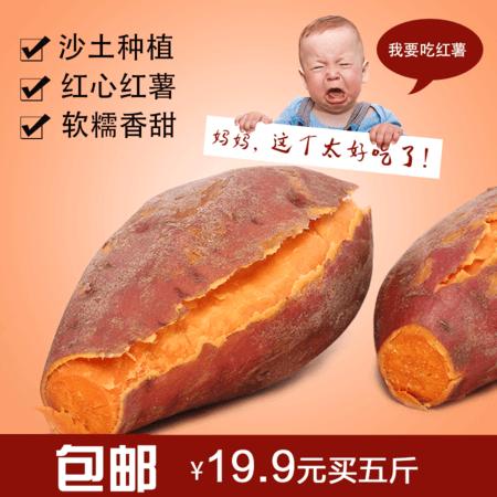 三瓜公社 新鲜芋头红薯 芋头五斤装农家番薯不打农药红心地瓜