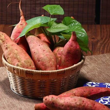 淮商 红心红薯五斤装新鲜现挖现发不打农药农家番薯地瓜