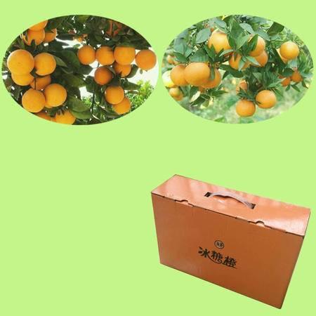 父爱如橙子 麻阳冰糖橙10斤装礼品大果,送礼有橙意,全国包邮