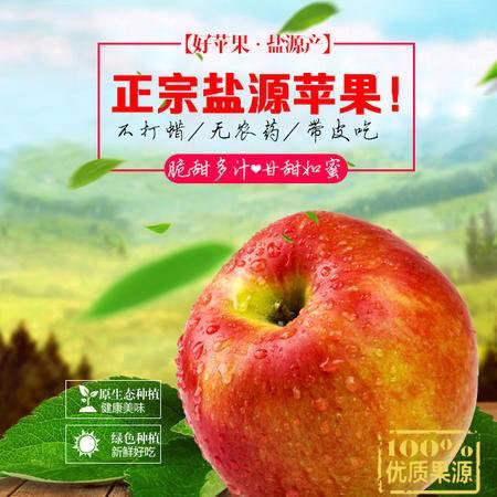 盐源苹果  凉山盐源邮政  精选特级果24枚  原产地直发