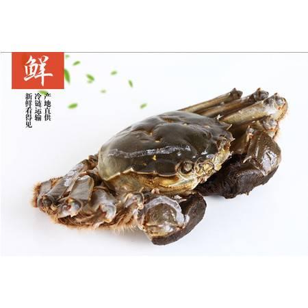 嘉鱼簰洲湾鲜活螃蟹公蟹2.6-3.0两母蟹1.8-2.1两公蟹母蟹共12只